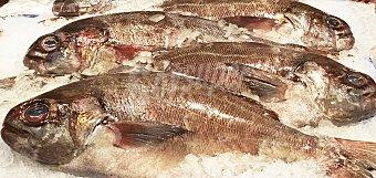 Pampano fresco cabezas y colas granel 150 g peso aprox.