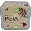 Helado de praliné y cacao cremoso ecológico y sin gluten Tarrina 450 ml Dino