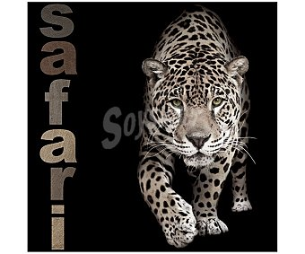 IMAGINE Cuadro con la imagen de un guepardo sobre fondo negro con la palabra safari a la izquierda y dimensiones de 50x50 centímetros 1 unidad