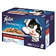 Comida para gatos Festín de Carnes en Gelatina Pack 12 x 100 g Purina Felix
