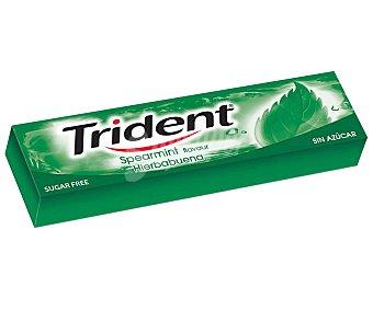 Trident Chicles sabor clorofila 13,5 g