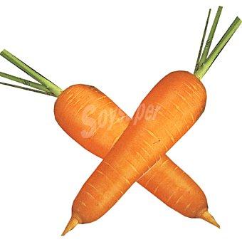 Zanahorias del pais extra al peso