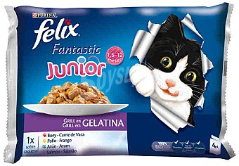 Felix Purina Comida para gatos junior Pack 4x100gr