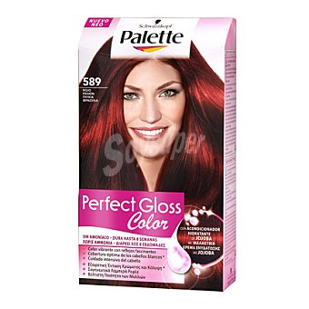 Gloss Tinte Perfect Color 589 Rojo Pasión 1 ud